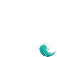 Vishay WSL2010-0.02-1%